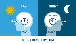 Melatonin and Sleep: can melatonin supplements improve sleep quality?